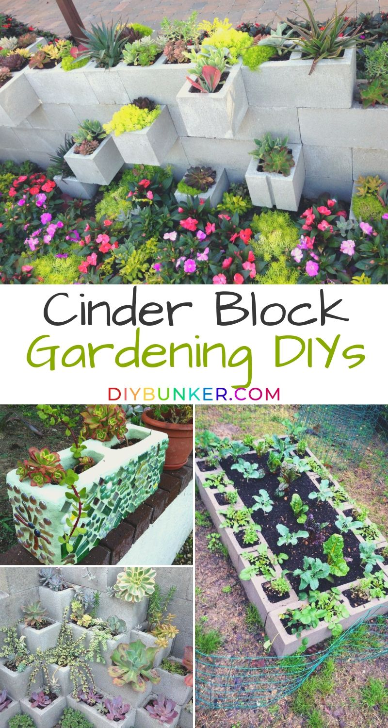9 Super Easy Cinder Block Gardens To Diy Yourself Cinder Block Garden Easy Garden Garden Projects