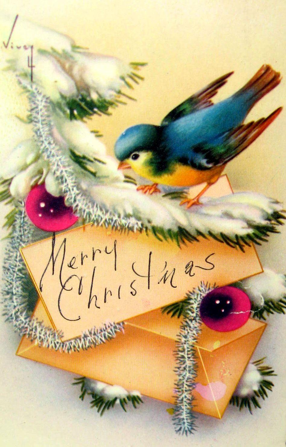 Vintage bluebird Christmas card.