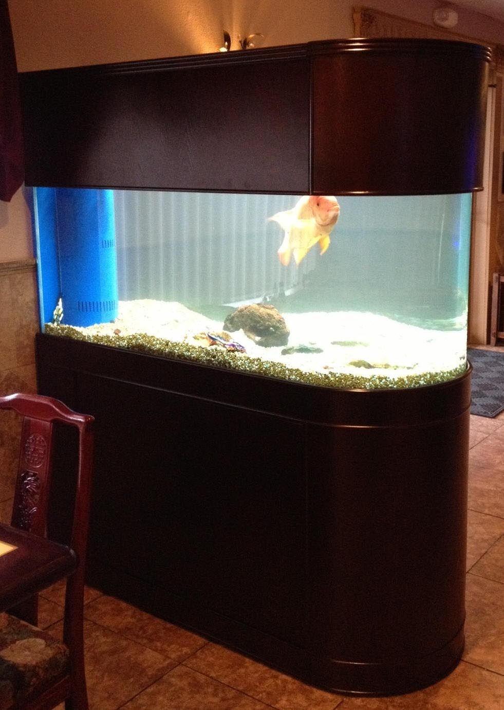 100 Gallon Bow Front Aquarium Dimensions Bow Front Aquarium Aquarium Stand Aquarium Stands