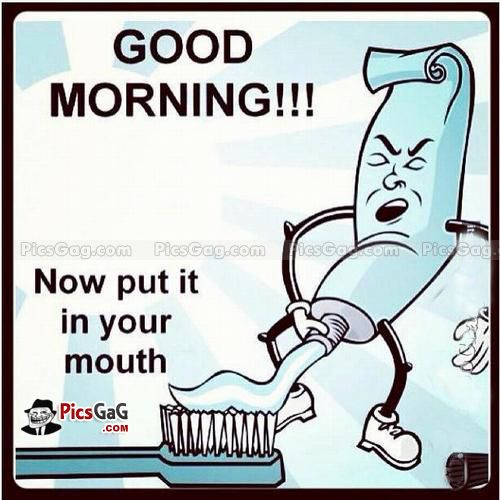 Funny Good Morning Meme For Him Funny Facts Funny Humor