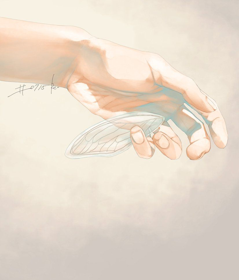 please hold my wings with care...Re°