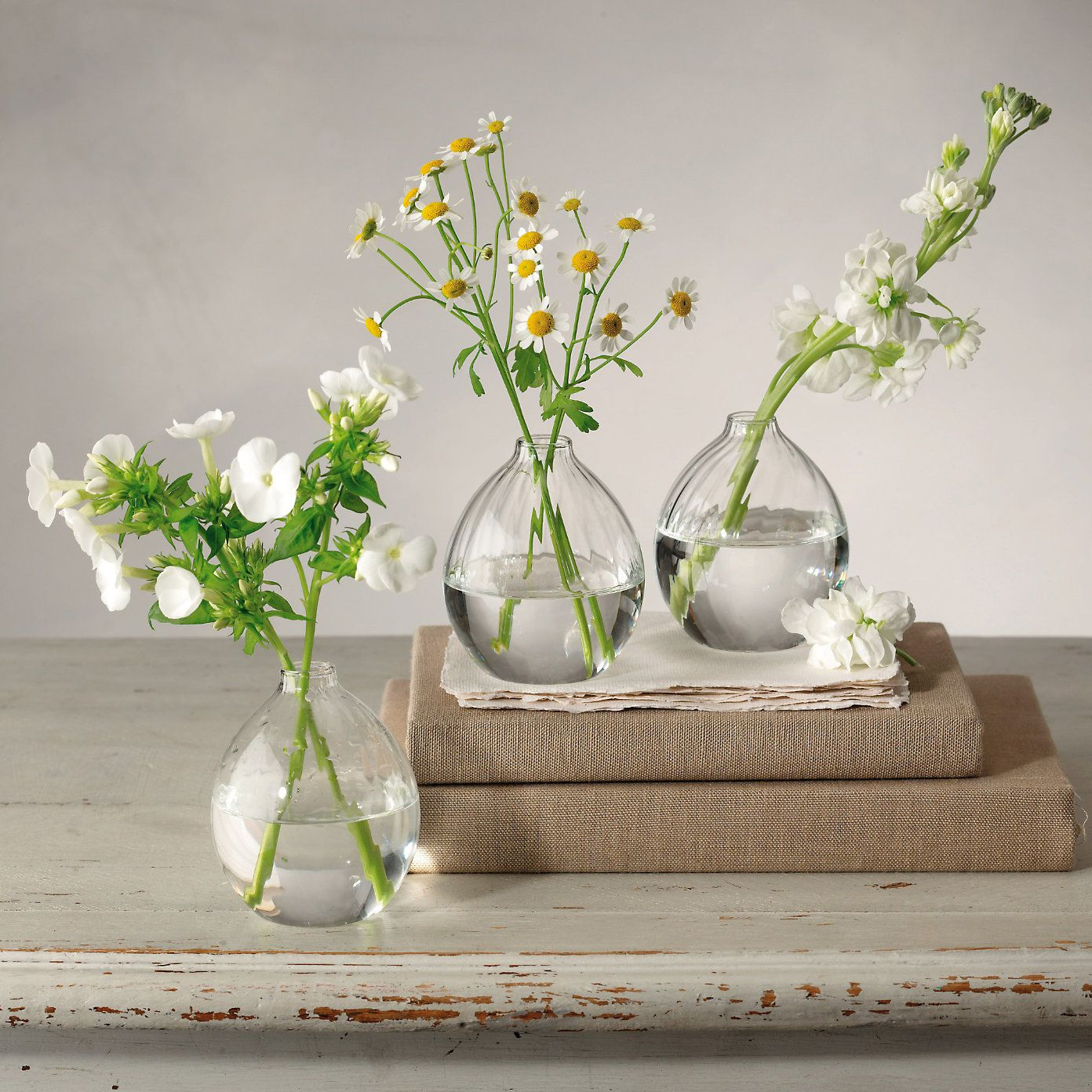 Ribbed bud vase set of 3 perfect for spring blooms the white ribbed bud vase set of 3 perfect for spring blooms the white company mightylinksfo