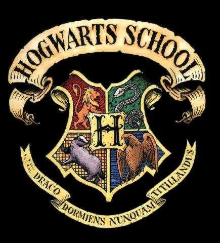 Hogwarts Stemma Cerca Con Google Hogwarts Harry Potter Incantesimi Stemma