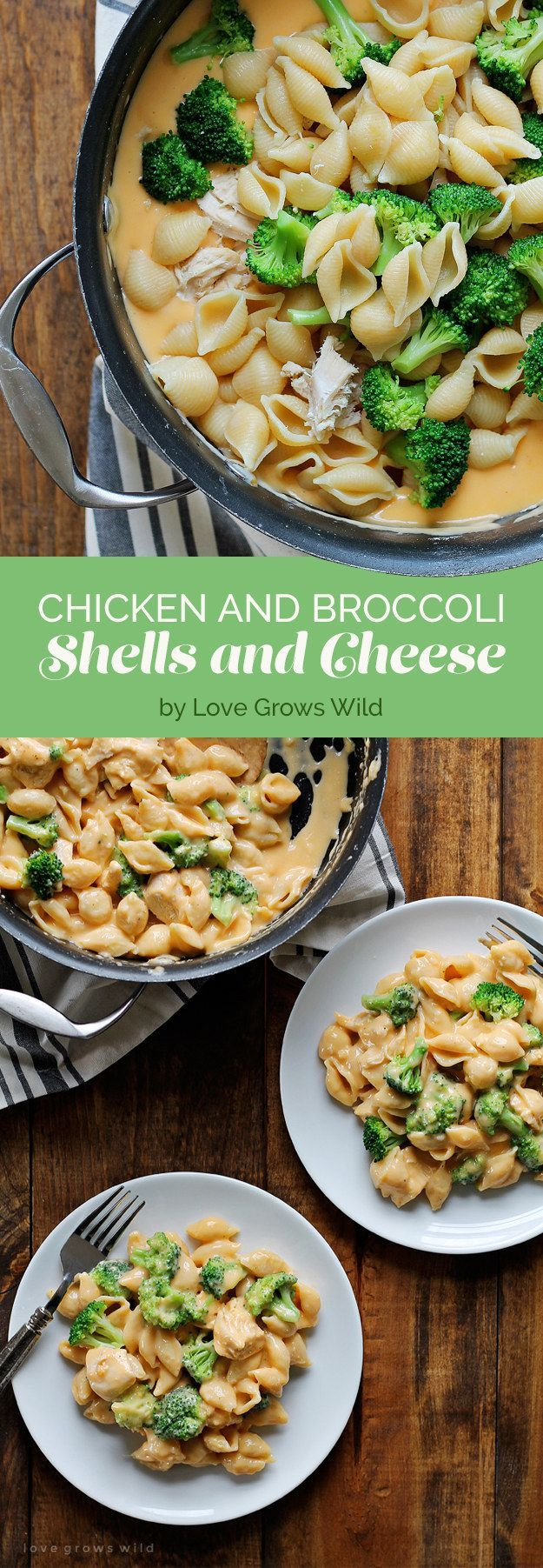 Chicken and Broccoli Shells and Cheese #chickenbreastrecipeseasy