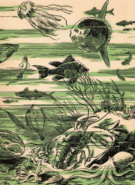 Ferdinand C Lane,All About the Sea, 1953, viaElwood & Eloise