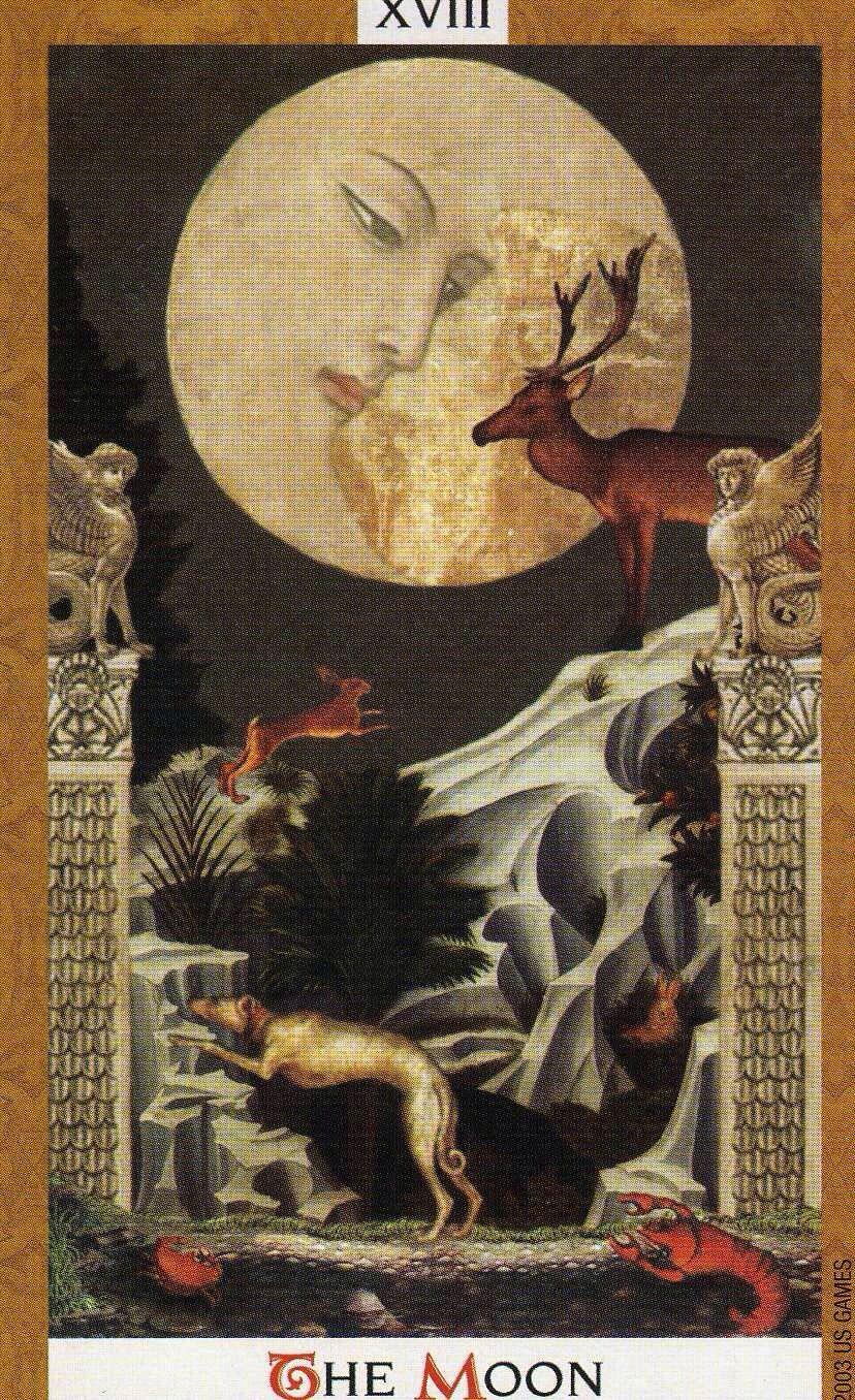 november 20 tarot