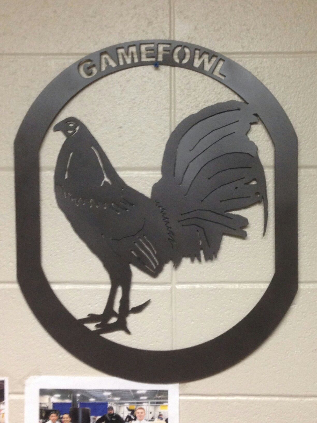 Game fowl Metal cut outs Pinterest Game fowl, Games