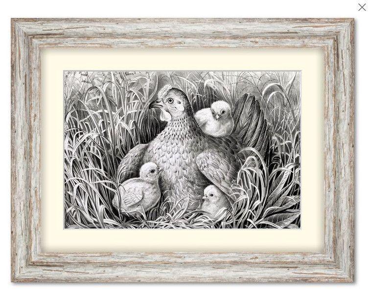 Weiteres - Henne mit Küken - gerahmt 42,4 x 32,4 cm Vintage - ein Designerstück von T-ARTLounge bei DaWanda