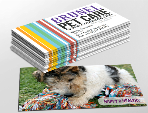 Contemporary business card design, ideal for animal health specialists. Customise a range of business card templates online for print at www.brunelone.com/premium-business-cards/designs