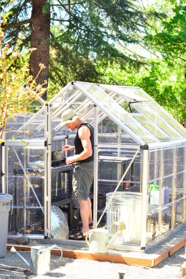 DIY Garden Project: Loweu0027s Home Improvement Polycarbonate Greenhouse