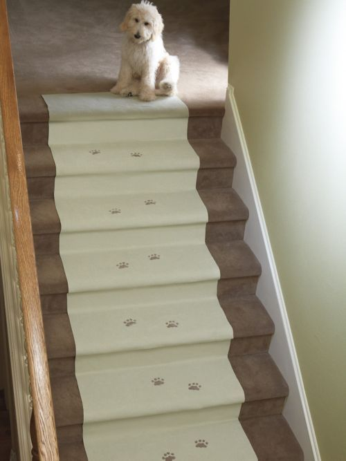 Access Denied Carpet Cover Carpet Stairs Buying Carpet