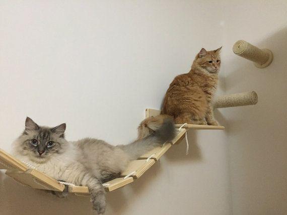 Gatti Mobili ~ The bridge ponte passerella in legno arredamento per gatti