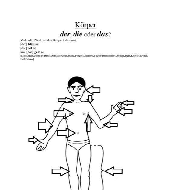 Körperteile: der, die oder das? - SES in 2018 | Deutsch als ...