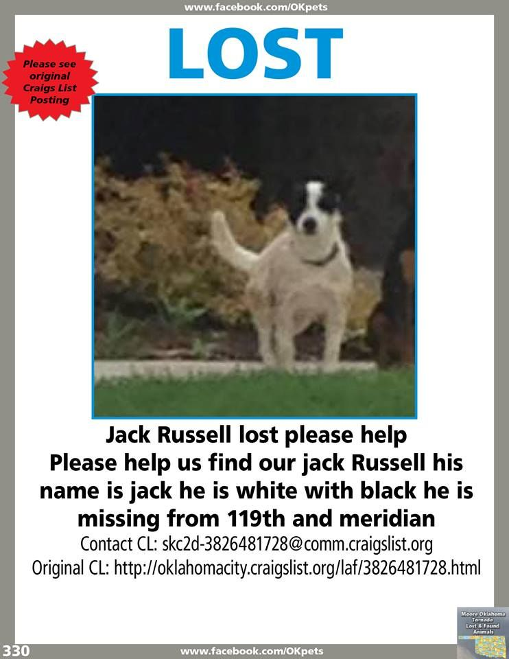 Please See Attached Flyer Jack Russell Losing A Pet Animal Rescue