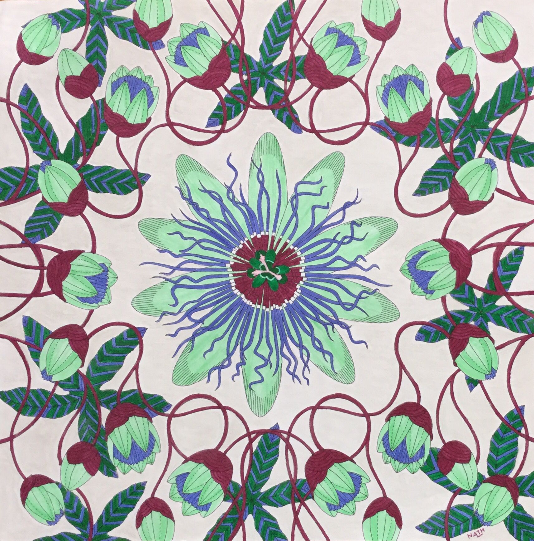 My Colouring Millie Marotta Tropical Wonderland Passion Flower Passiflore