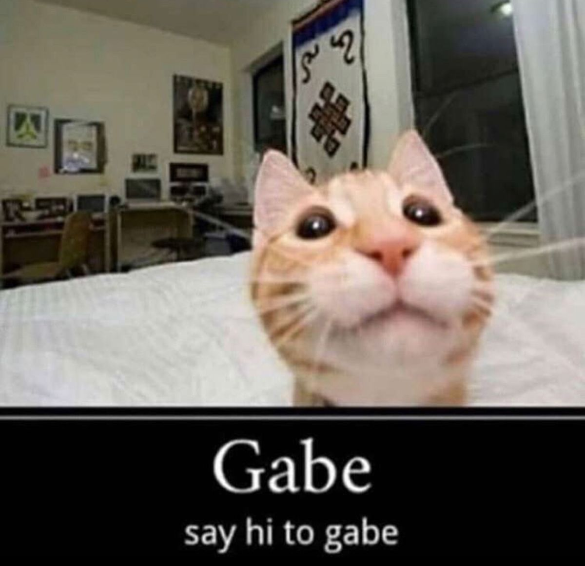 Hi Gabe Funny Laugh Gabes Work Cartoons