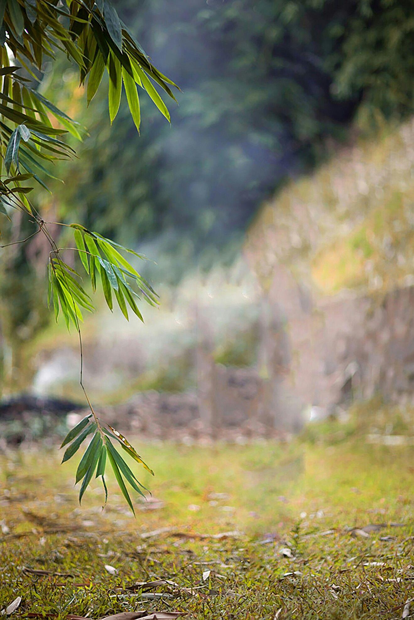 Pin By Aj On Aj Blur Photo Background Love Background Images Photo Background Images