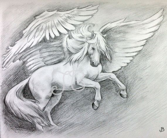 ORIGINAL Pegasus Horse Rearing Graphite Pencil Drawing by Jess ...