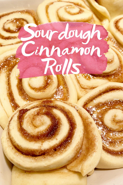 Easy Sourdough Cinnamon Rolls Dessert Recipes Easy Sourdough Cinnamon Rolls Cinnamon Rolls