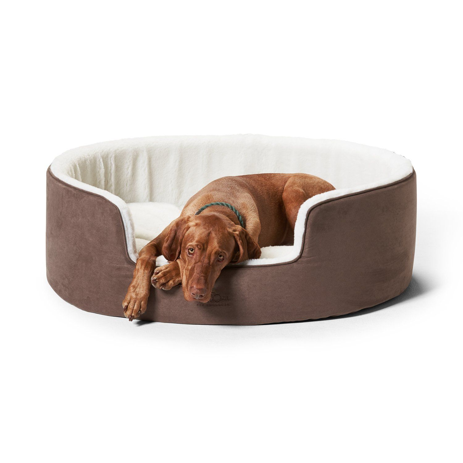 Buddy Bed Mocha Orthopedic Washable Dog Bed Is Now On Sale In