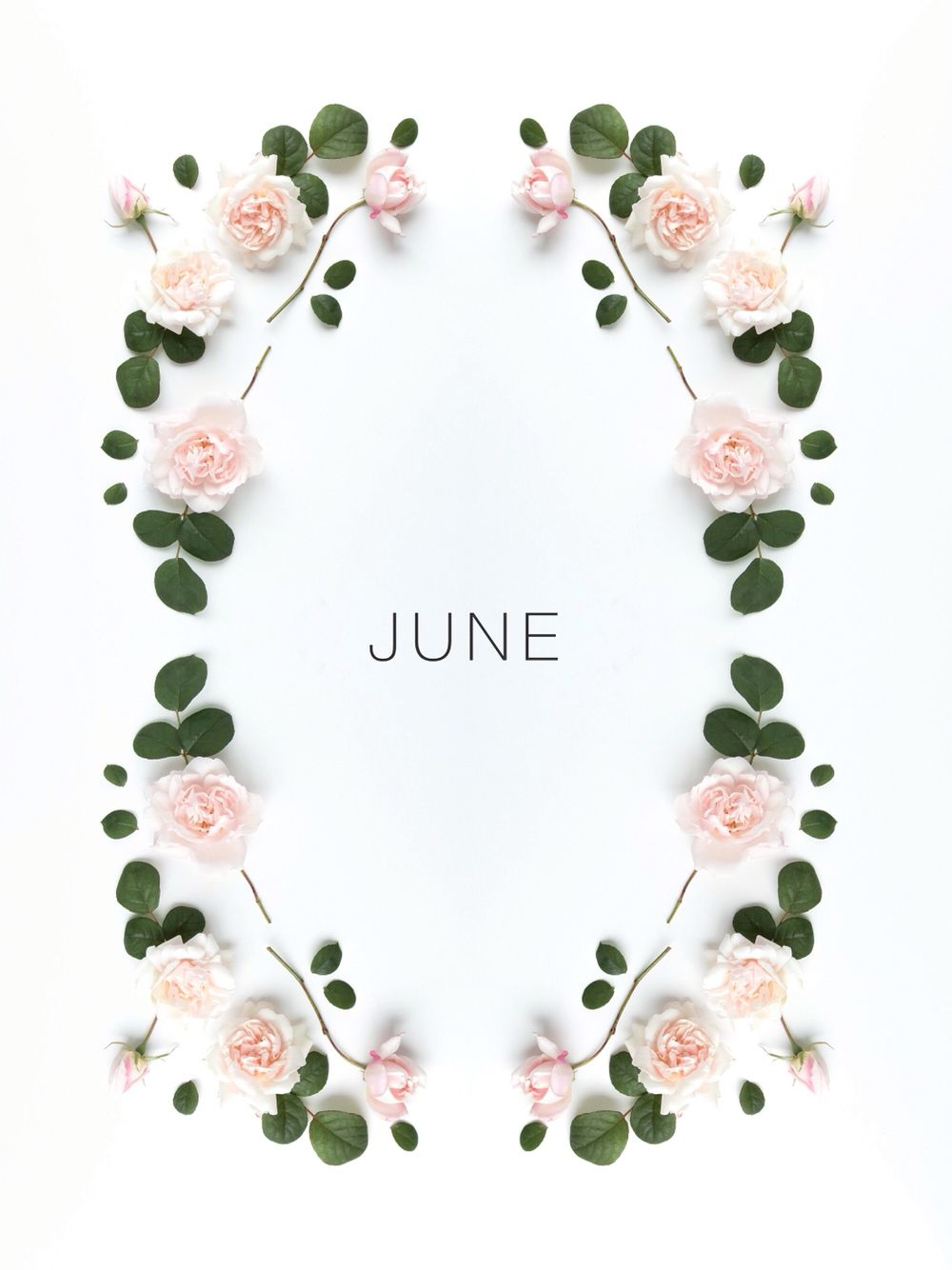 Hello june lets celebrate pinterest hello june june and hello june june gemini hello june months in a year month flowers izmirmasajfo