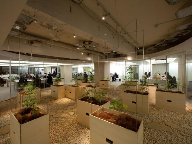 9 | These Office Workers Can Tend Crops While They're In Boring Meetings | Co.Exist | ideas + impact