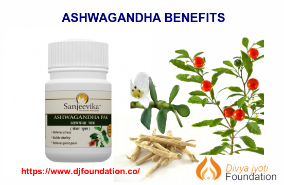 Plant Name Ashwagandha Scientific name Withania