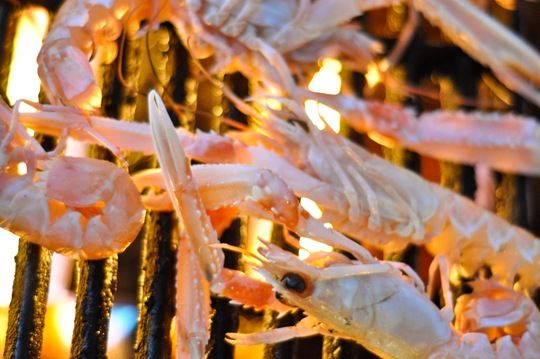 Barbecued gambas