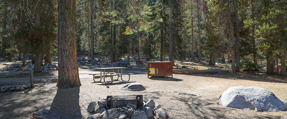 Lodge pole campground near sequoia national park kings