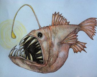 Pottery lantern fish any three fish drawings by barry si for Si fish and more