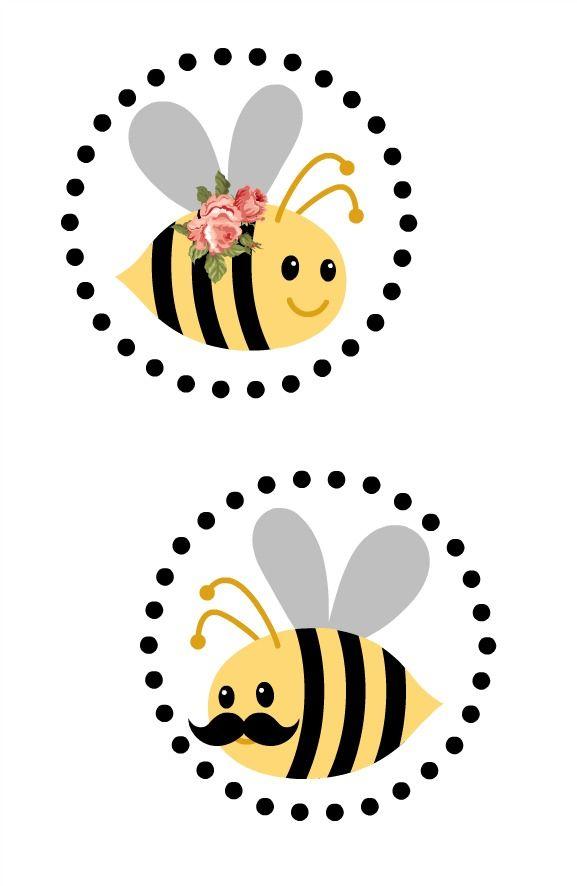 Is It a Boy or Girl Bee?