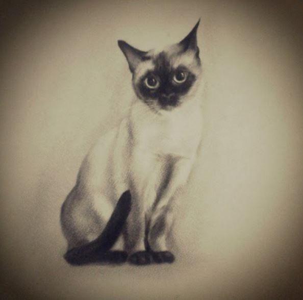 cattattoo cat tattoo blackandwhite rh pinterest co uk siamese cat tattoo ideas siamese cat tattoo ideas