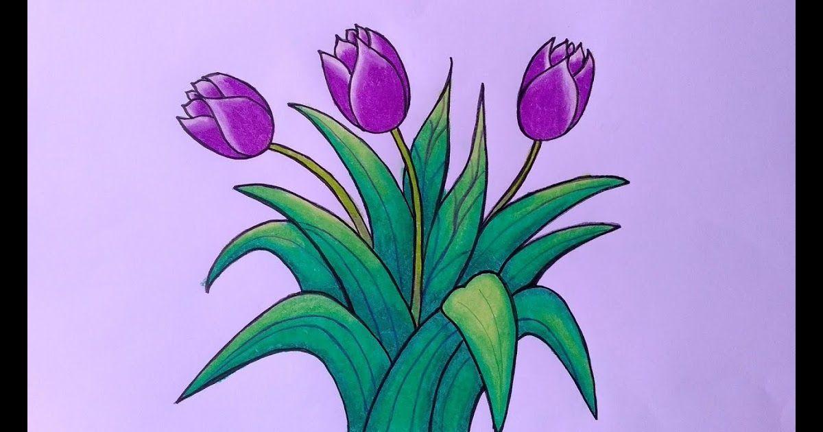 Pensil Cara Menggambar Bunga Matahari Menggambar Bunga Matahari Cara Menggambar Dan Mewarnai Do Menggambar Bunga Menggambar Bunga Matahari Cara Menggambar