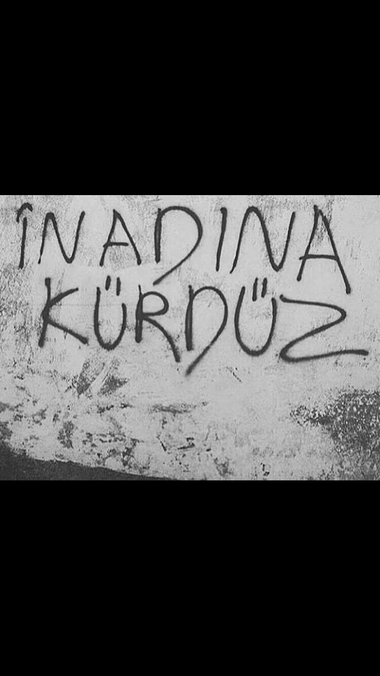 I am Kurdish! And no one can say I am Turkish, Iranian