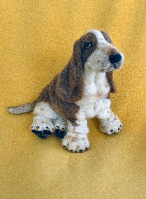 Willy - A Basset Hound Wooliedog by Wooliedales,