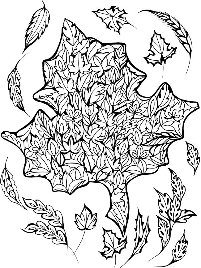 Welcome to Dover Publications  From: Creative Haven Deluxe Edition Four Seasons Coloring Book