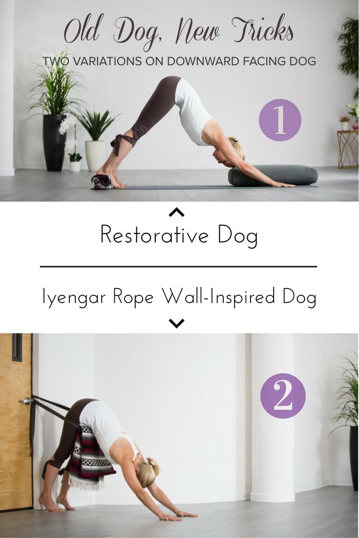 Yin Yoga Downward Dog