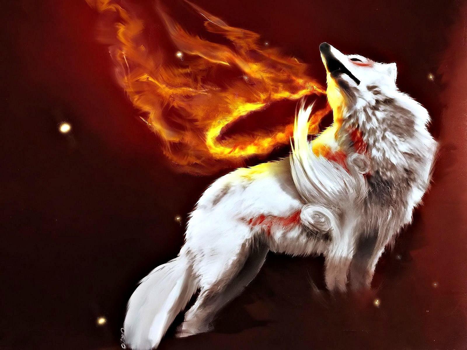 Call Of The White Wolf Wolf Hintergrundbild Tier Wallpaper Kunstgeschichte