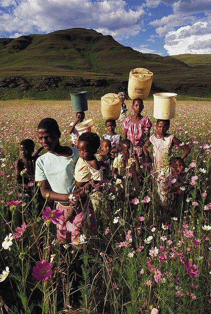 Zulu Flower Children in a field of Cosmos - Natal Midlands / South Africa