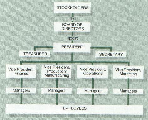 Typical Corporate Organizational Chart Non-profit organizational