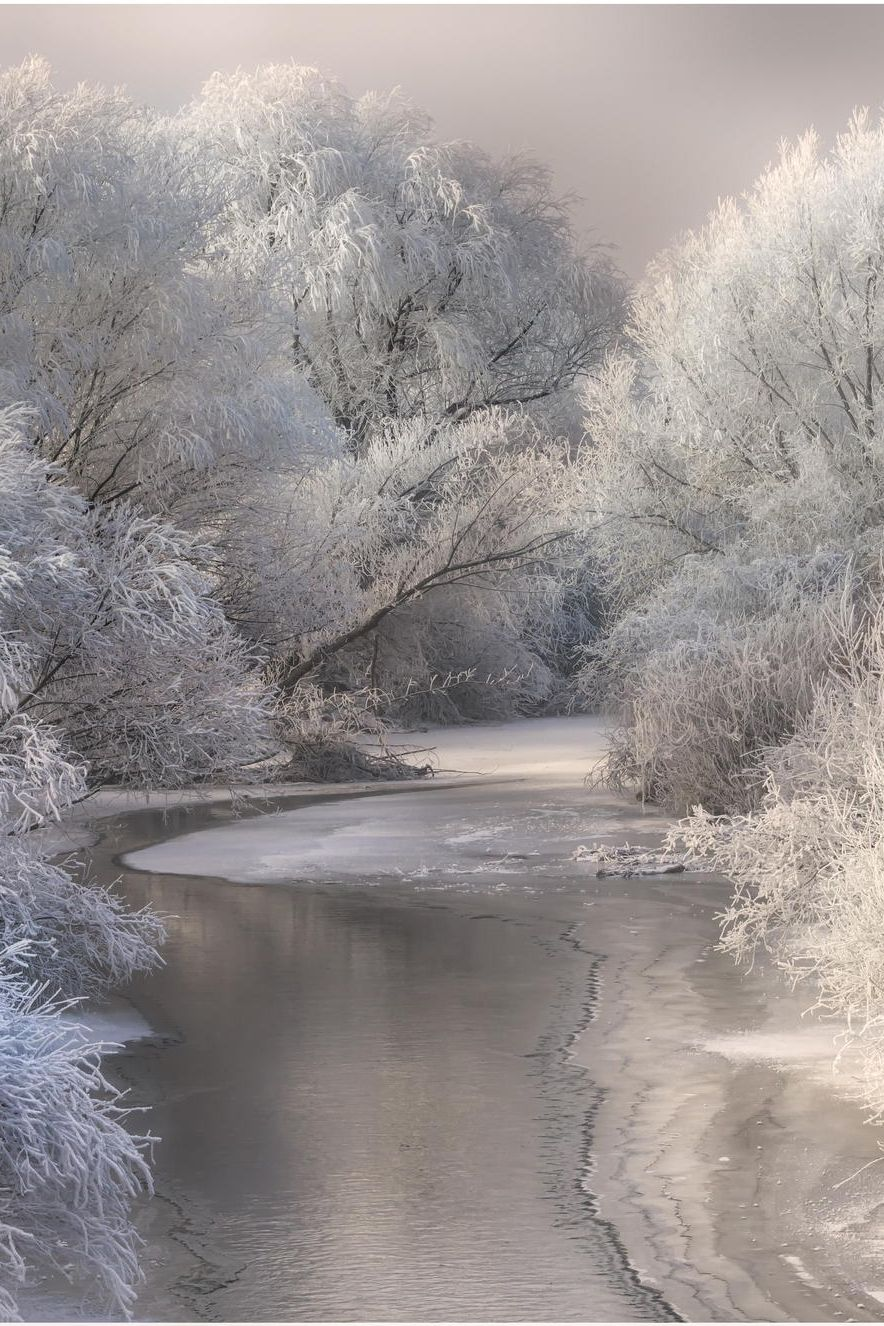 Snowy White Countryside, Winter, Trees, Water, Reflection