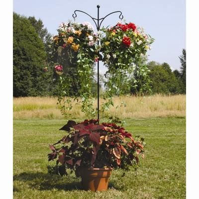 Double Shepherd Hook I Have One Of These. Hopefully My Wave Petunias Have  Rooted And