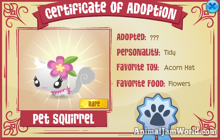 animal jam pet squirrel