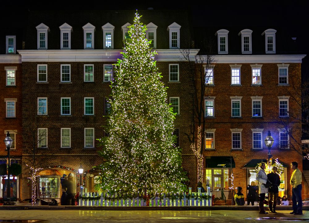 Top 14 Things to Do in Alexandria, Virginia This Holiday Season | Holiday, Old town alexandria