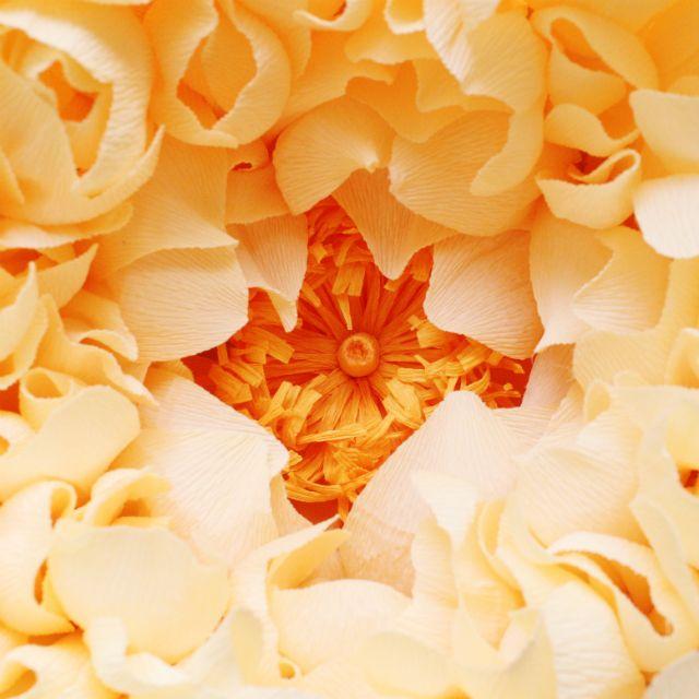 這是一「紙」美麗的花。 - ㄇㄞˋ點子靈感創意誌