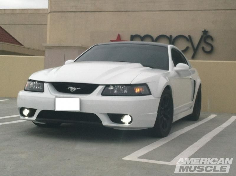 Cervini S 1995 Style Cobra R Mustang Hood 99 01 Front Per In White