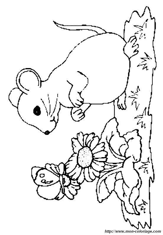 Ausmalbilder Maus 731 Malvorlage Alle Ausmalbilder Kostenlos Ausmalbilder Maus Zum Ausdrucken Ausmalbilder Ausmalbilder Tiere Ausmalen