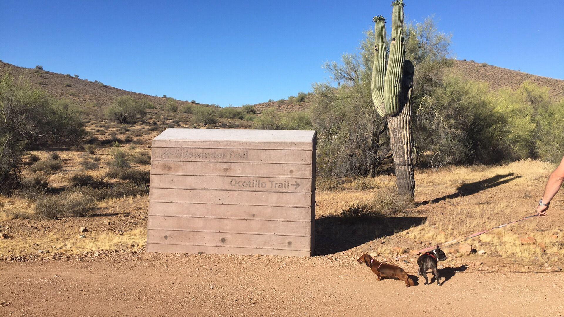 Desert Hills Trailhead, Sonoran Preserve Trails