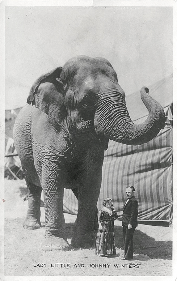 Lady Little And Johnny Winter Circus And Year Unspecified Vintage Elephant Elephant World Elephant