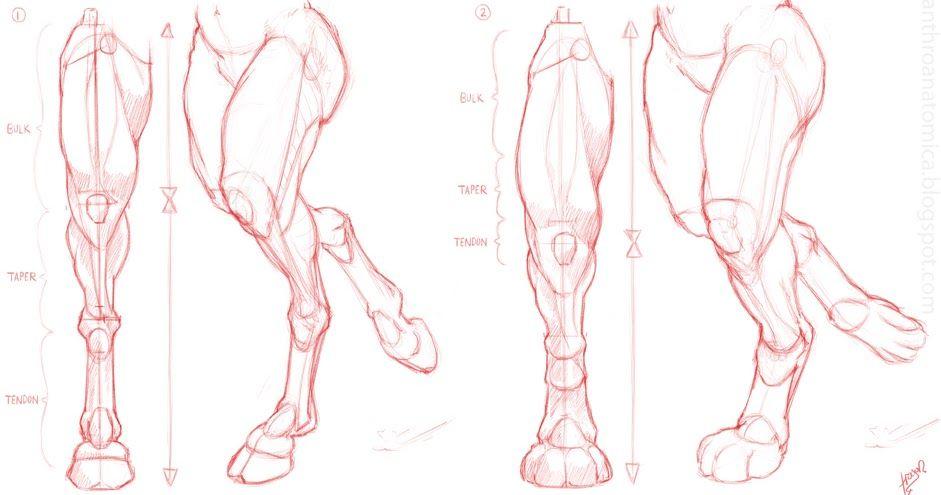 Related image | Dibujo | Pinterest | Dibujo, Lápiz y Anatomía